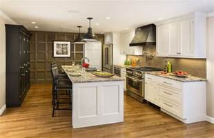 Cabinet Pictures Kitchen Kitchen Cabinets Door Styles Pricing Cliqstudios