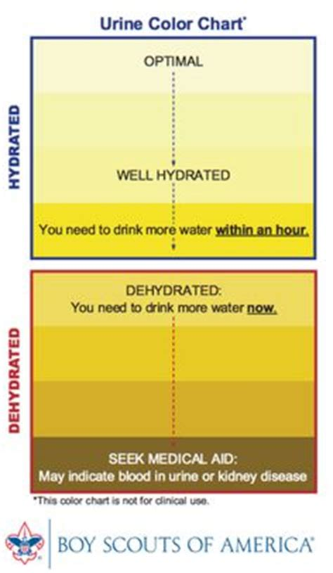 c diff hydration facts on facts and
