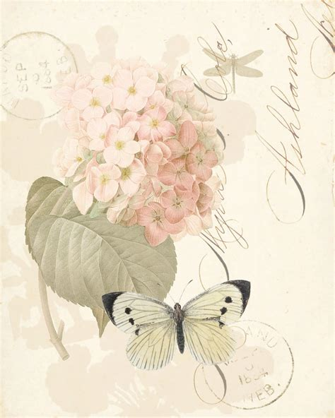 paper roses writer vintage paper flowers butterfly writing ephemera