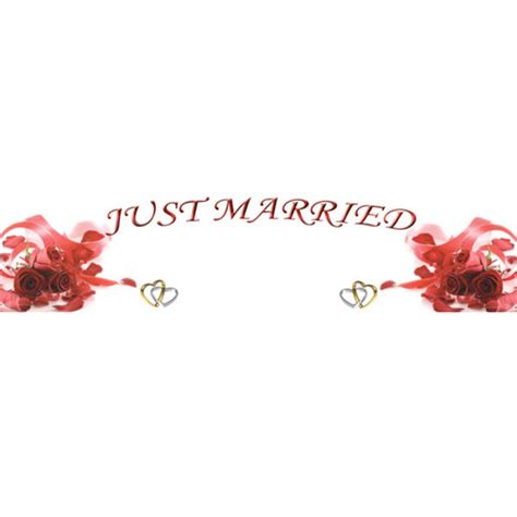 Wedding Banner Size by Just Married Roses Wedding Banner Balloons Co Uk