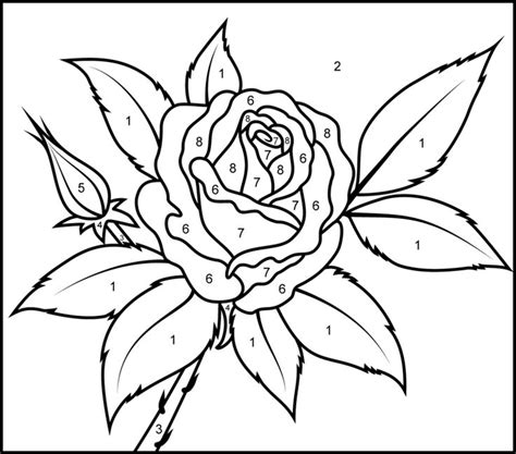 color by number flower coloring pages 88 best paint by number images on pinterest adult