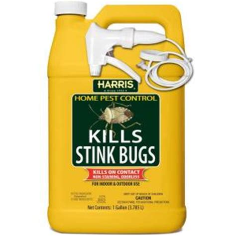 does harris bed bug killer work how do i get rid of stink bugs in house the home depot