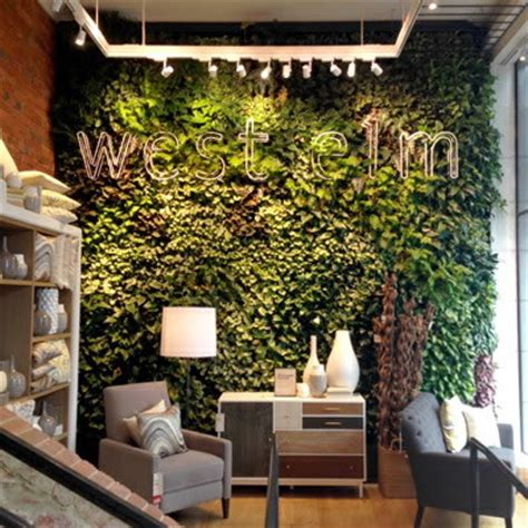 green walls vertical plant gardens plantscaping