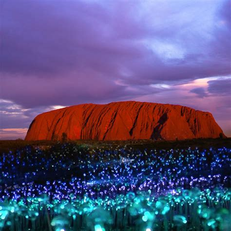 Field Of Light by Australian Tourism Archives Thrifty