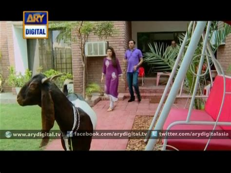 bulbulay day special bulbulay ep 259 eid special 1st day 6th october 2014