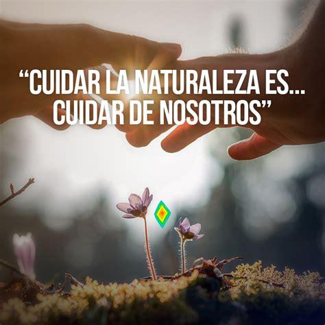 imagenes cristianas sentimentales cuidar de la naturaleza es cuidar de nosotros frases