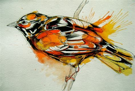 watercolor tattoos maryland 216 best abby images on birds