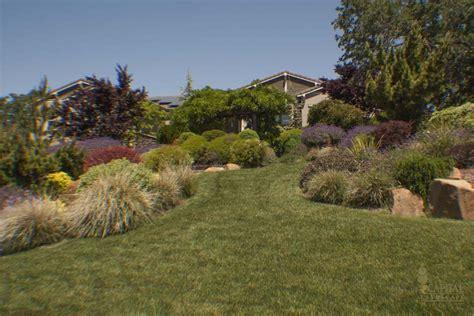 Landscape Rock Roseville Ca Beginning To Bloom Remodel Or Repair Sacramento Landscape
