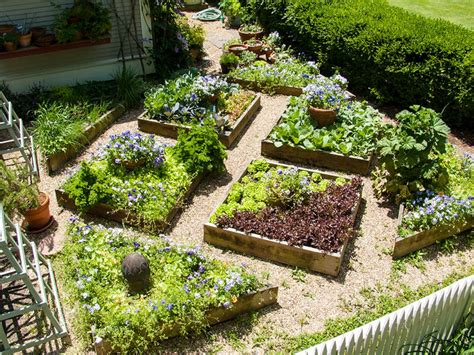 image gallery edible landscaping
