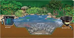 Aquascape Pumps Micropond Kit Makes It Easy To Have A Backyard Pond