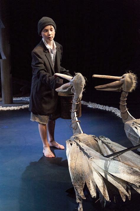 tornado boys review storm boy barking gecko sydney theatre company suzy goes see