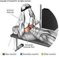 flat bench cable flyes 1000 ideas about chest muscles on pinterest biggest