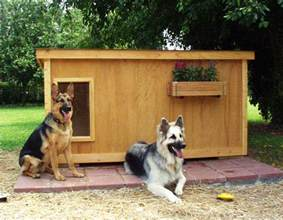 House Dogs Dog Houses And Dog House Plans Fun Animals Wiki Videos