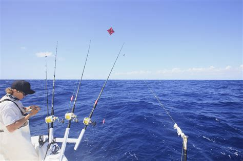 fish cing tent boat list of synonyms and antonyms of the word kite fishing