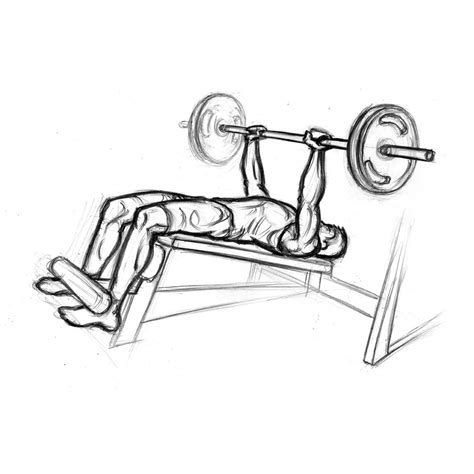 chest bench press technique decline bench press chest exercise with barbell