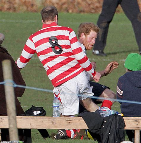 prince william doodle daily mail bearded prince harry slide tackles william at