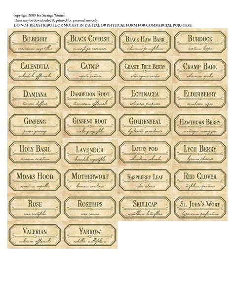printable herb labels free spice labels printable an herbal medicine