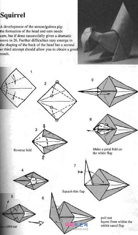 Origami Squirrel Diagram - diagram template category page 237 gridgit