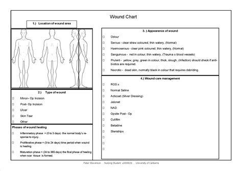 wound chart template wound management nursing clinical placement pete