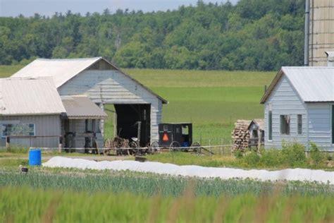 Mennonite Sheds Ontario by Visiting The Desbarats Ontario Order Mennonite