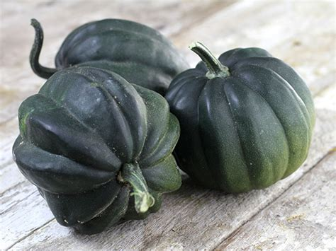 Table Squash by Table Acorn Squash Baker Creek Heirloom Seed Co