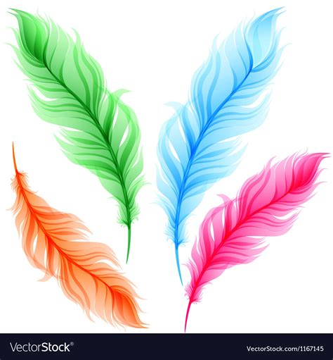 colorful feathers set of colorful transparent feathers royalty free vector