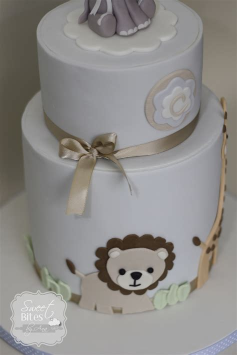 animal theme boy baby shower cake cakecentral - Boy Themed Baby Shower Cakes