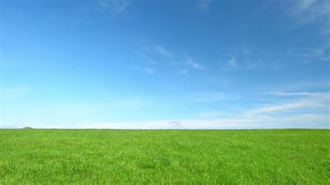 beautiful green grass clear blue stock footage video
