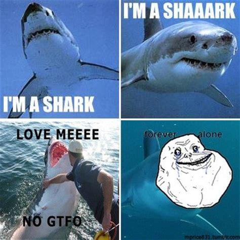 Sad Shark Meme - sad shark