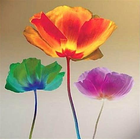 imagenes de flores modernas best 25 imagenes de pinturas abstractas ideas on