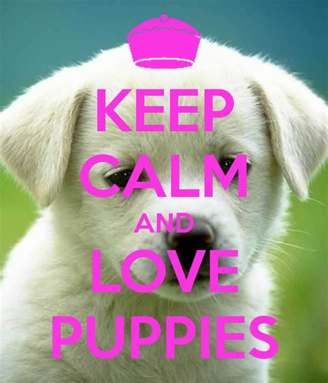 keep calm and puppies keep calm and puppies poster 1 and only keep calm o matic