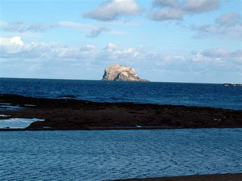 isle of may boat trips north berwick boat trips from edinburgh to the islands in the firth of