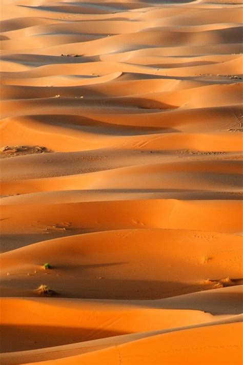 afrika marokko wueste sahara duenen  hd