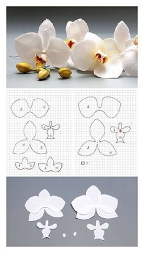 printable paper orchid magic coloring orchid flower template felt flowers