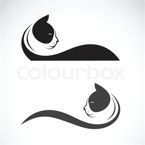 vector image of an cat on white background stock vector