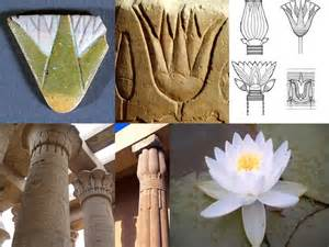 Lotus In Ancient Ancient Lotus Egy King