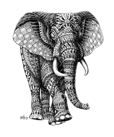 black and white pattern elephant quot ornate elephant v 2 quot by bioworkz redbubble