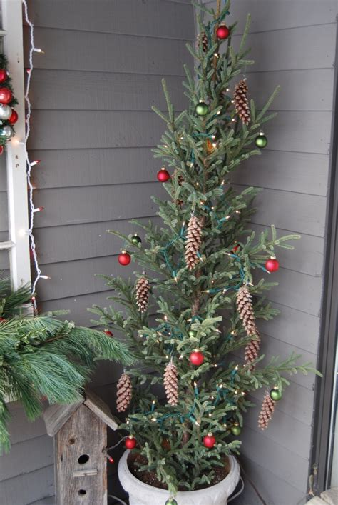 decorated slim tree 175 best images about decorating with lights on