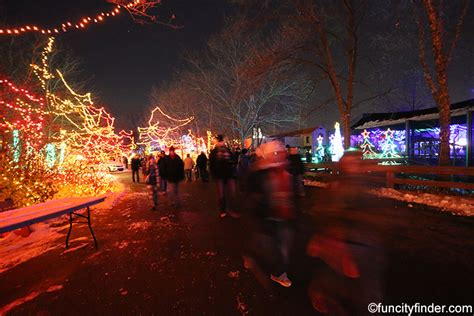 christmas at the zoo a lights celebration to remember