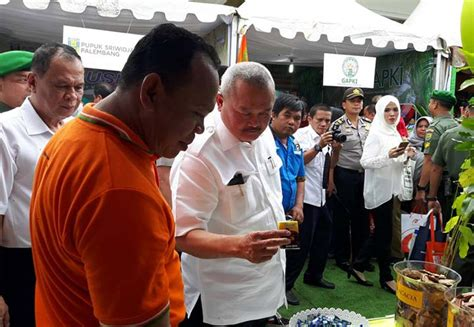 cinema 21 internasional palembang sumatera selatan pt tel berpartisipasi di bonn challenge di palembang