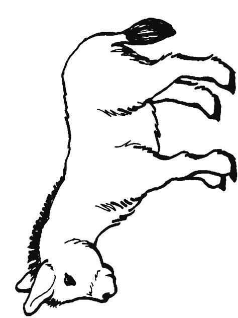 donkey face coloring page free coloring pages of donkey face