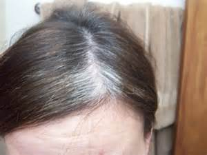 what is best hair for wirey gray hair best hair color for gray hair coverage natural dye at