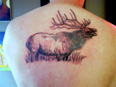 elk tattoos pin elk tattoos on