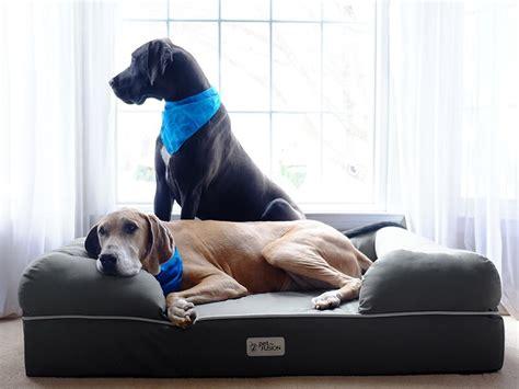 best sofa for pet hair top 10 handheld vacuum for pet hair in 2018 reviews best