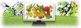 best vegetable gardening software