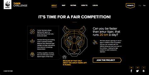 tiger challenge tiger challenge awwwards sotd