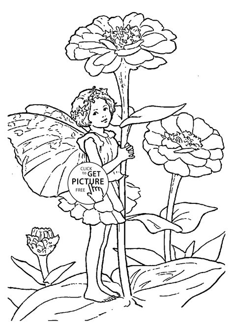 Coloring Page Zinnia by Zinnia Coloring Zinnia Coloring