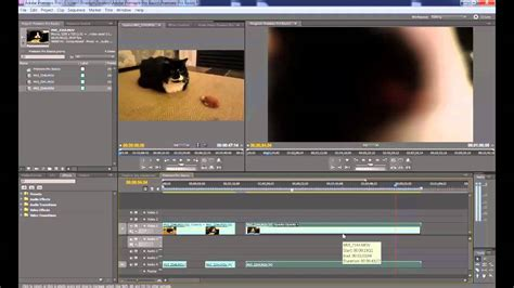 adobe premiere pro uses how to use adobe premiere pro cs 5 5 the basics