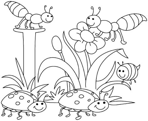 Spring Coloring Pages For Boys Download Colouring Pictures For Preschoolers