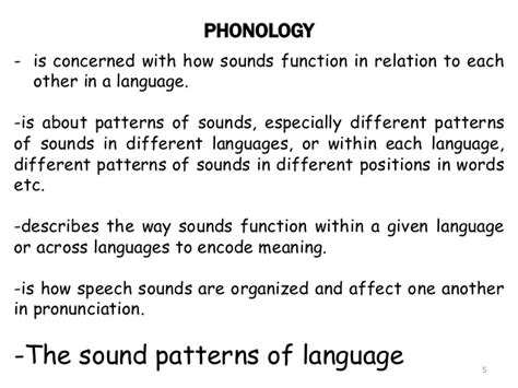sound pattern in language phonology the sound patterns of language